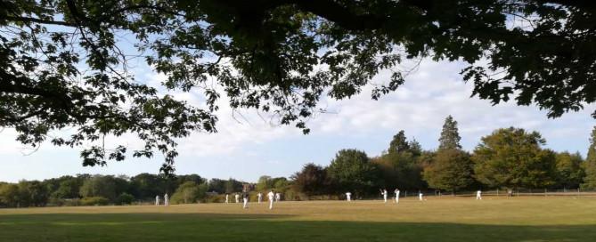 Cricket at Hammerwood